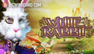 White Rabbit (Big Time Gaming) Slot Review
