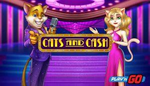 Cats & Cash