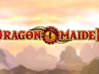 dragon maiden play n go