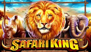safari king pragmatic play