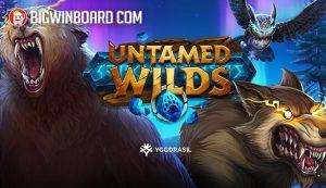 untamed wilds