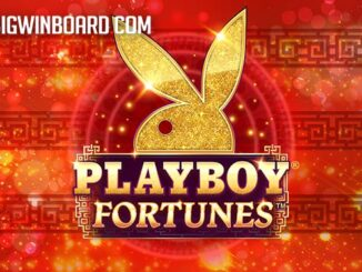 playboy fortunes slot