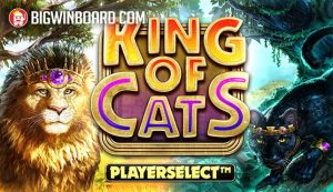 king of cats slot